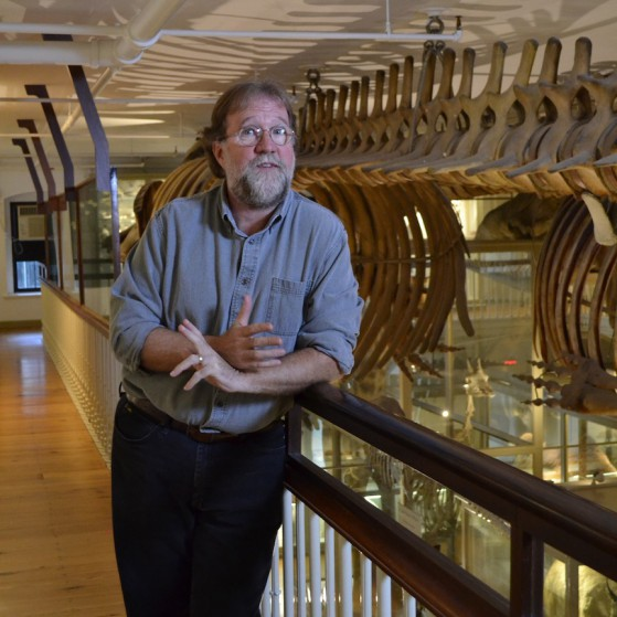 Sean Carroll in the Harvard Museum of Natural History